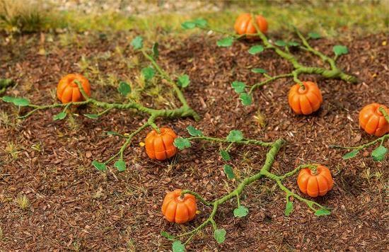 Faller 181258 6 Kürbispflanzen